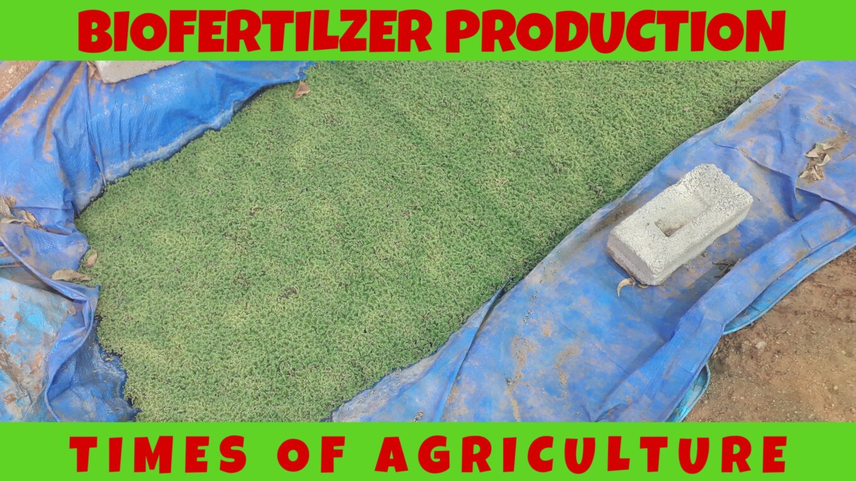BIOFERTILZERS IN AGRICULTURE