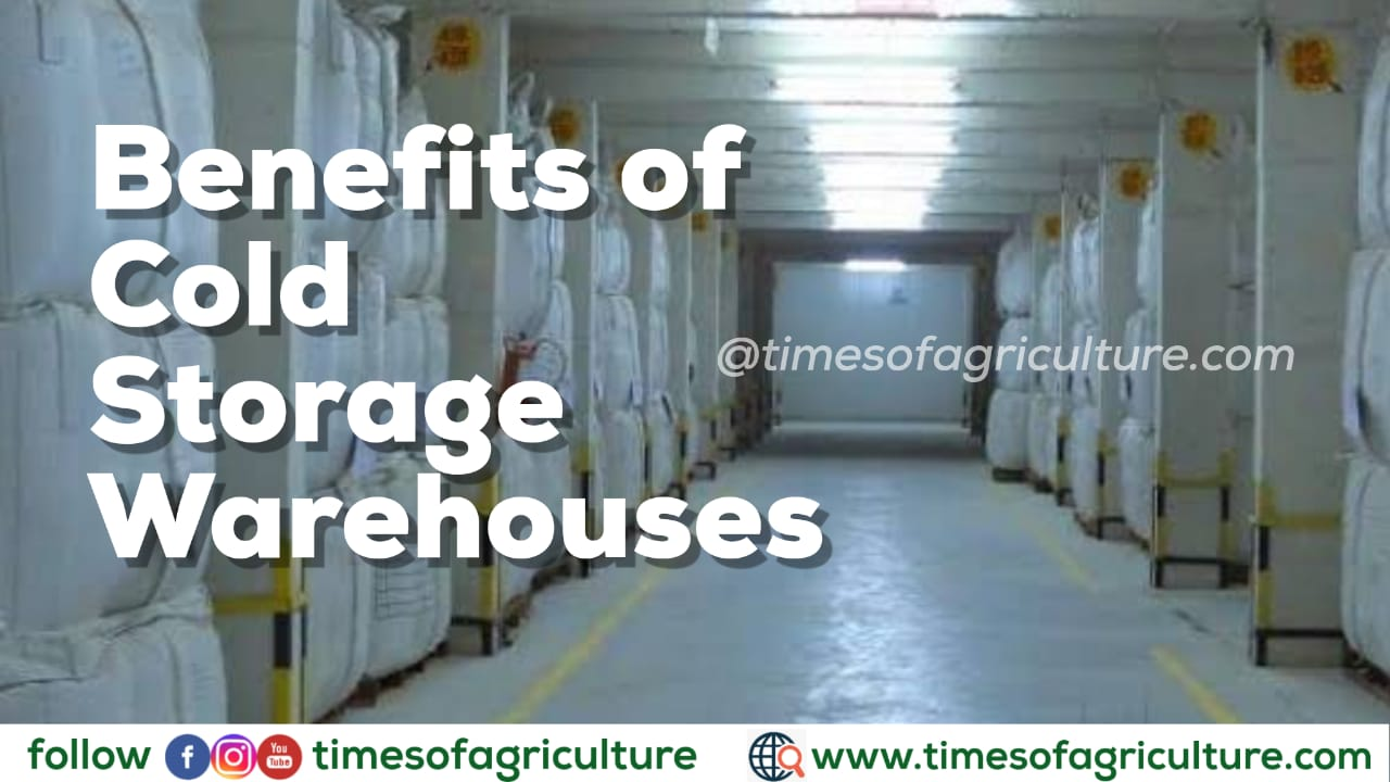 BENEFITS OF COLD STORAGE WAREHOUSES