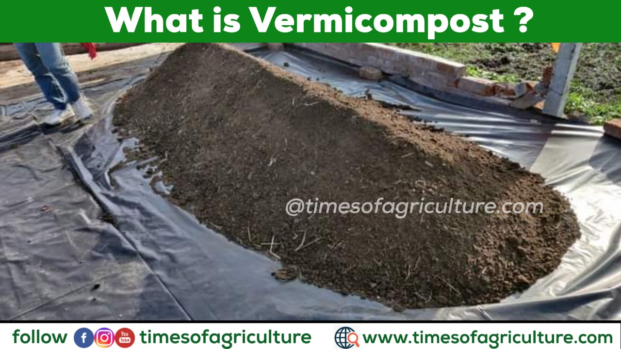 WHAT IS VERMICOMPOST